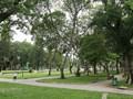 TPHCM tăng thêm công viên, cải thiện mảng xanh đô thị