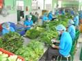 924 cơ sở vi phạm trong Tháng hành động vì An toàn thực phẩm năm 2020