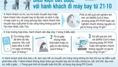 Tổng hợp thông tin báo chí liên quan đến TP. Hồ Chí Minh ngày 22/10/2021