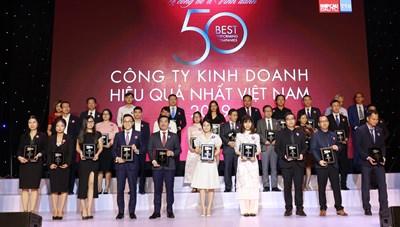 Vinamilk liên tiếp lọt top công ty kinh doanh hiệu quả nhất Việt Nam