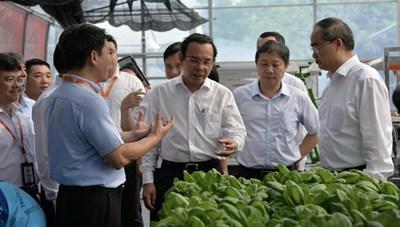 Tổng hợp thông tin báo chí liên quan đến TP. Hồ Chí Minh ngày 17/3/2021