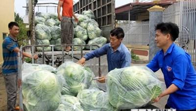 Doanh nghiệp vận tải chung tay hỗ trợ các địa phương tiêu thụ nông sản