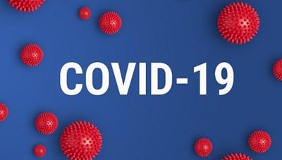 Thông tin tình hình dịch bệnh Covid-19 trên địa bàn TP. Hồ Chí Minh ngày 29/12/2020