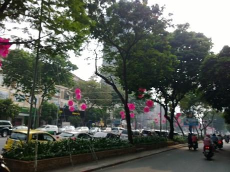 TP. Hồ Chí Minh giữ nguyên khung giá đất hiện hành cho giai đoạn 2020-2024