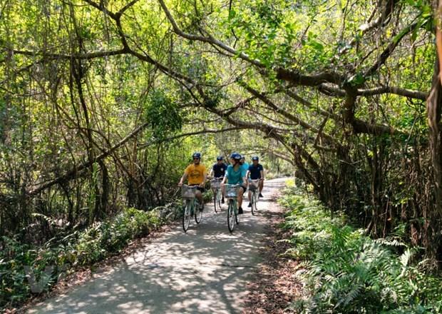 Du lịch trải nghiệm văn hóa bản địa cũng là xu hướng của các nhóm khách nội địa trong năm qua. (Ảnh: Mai Mai/Vietnam+)