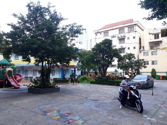 Cây xanh được cắt tỉa, mé nhánh gọn gàng tại Trường mầm non TP.HCM - Ảnh: TRỌNG NHÂN