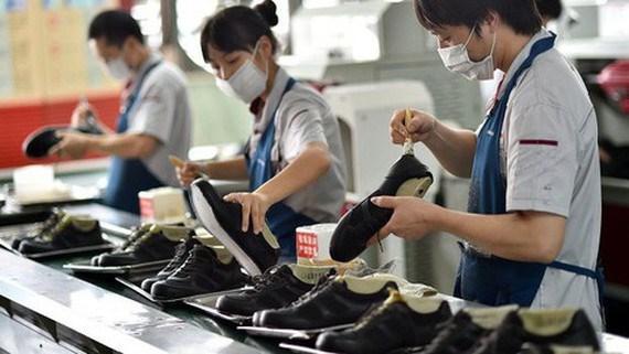 Các doanh nghiệp sử dụng nhiều lao động như dệt may, da giày đang cố xoay trở để sản xuất an toàn giữa dịch bệnh. Ảnh minh họa