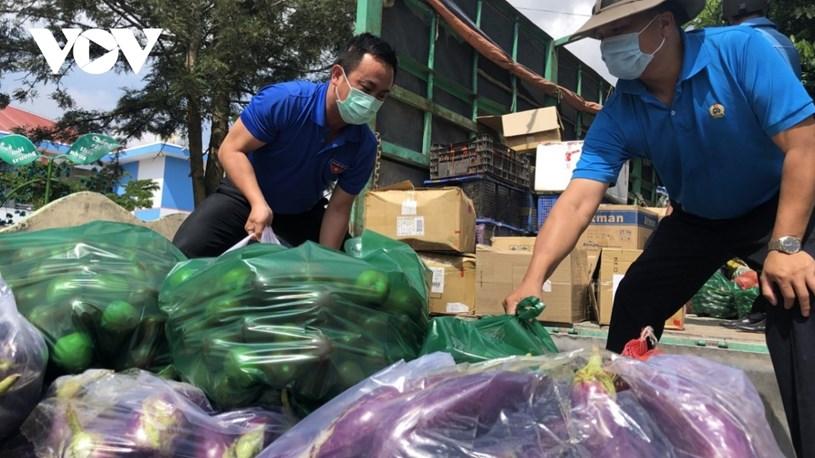 Hàng chục tấn rau củ quả, nông sản từ Lâm Đồng, Đồng Nai, Đồng Tháp... được gửi tặng cho TP.HCM mỗi ngày.