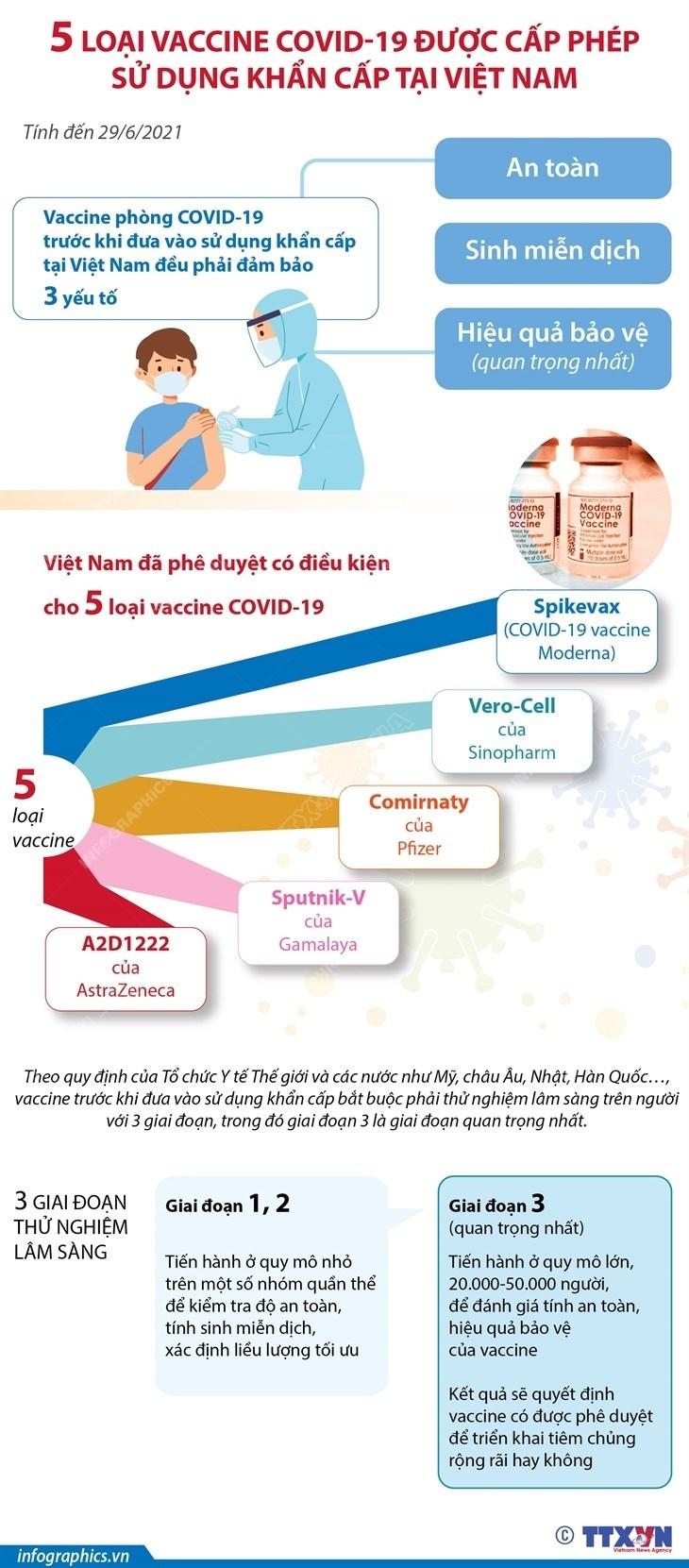 [Infographics] 5 loại vaccine COVID-19 được cấp phép sử dụng khẩn cấp - Ảnh 1