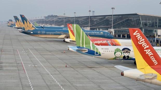 Máy bay của các hãng hàng không nằm sân la liệt tại sân bay Nội Bài. (Ảnh: CTV/Vietnam+)