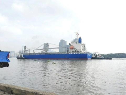 Hai đoàn tàu số 6, 7 được tàu biển chở, cập cảng Khánh Hội (Q.4, TP.HCM) sáng nay. Ảnh: MAUR.