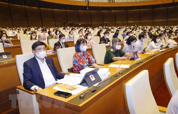 Đoàn đại biểu Quốc hội tỉnh Hải Dương dự phiên họp. (Ảnh: Doãn Tấn/TTXVN)