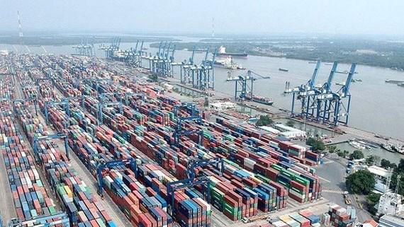 Mở lại hoạt động xuất khẩu gạo tại Bến 125 Cảng Cát Lái - Ảnh 1