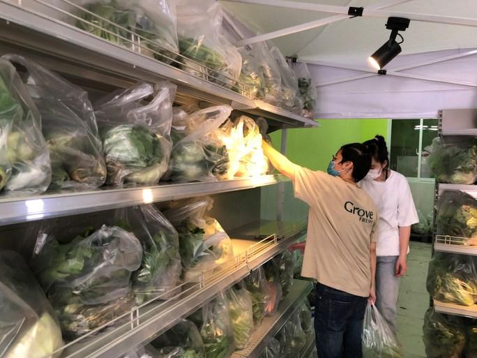 Các loại rau củ quả được sắp xếp theo combo, mỗi combo gồm 9 mặt hàng, giá bán khoảng 120.000 đồng