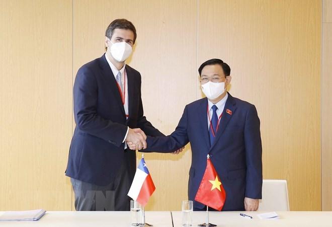 Chủ tịch Quốc hội Vương Đình Huệ hội kiến Chủ tịch Hạ viện Chile Diego Alfredo Paulsen Keh. (Ảnh: Doãn Tấn/TTXVN)