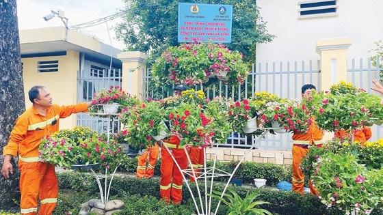 Những chậu hoa của người lao động mang đến đã giúp đường An Dương Vương (quận 5, TPHCM) thêm đẹp