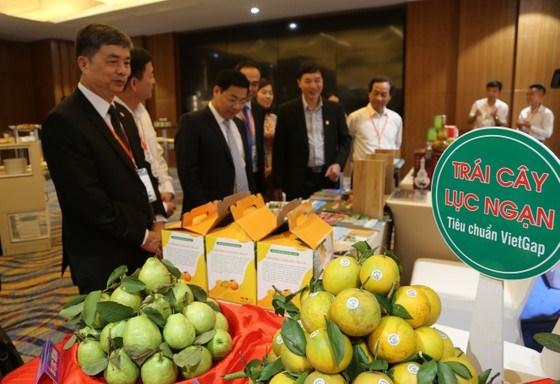 Nhiều đặc sản, sản phẩm du lịch đặc biệt được giới thiệu dành riêng cho du khách TPHCM