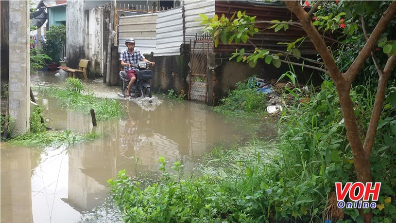 Triều cường và mưa lớn có thể gây ngập ở một số khu vực tại TPHCM (Ảnh: LH)