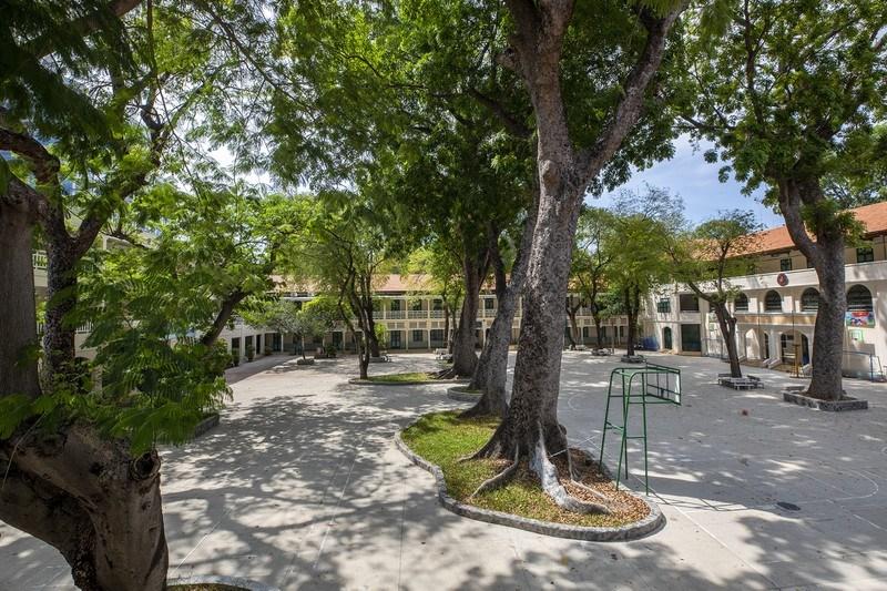 Sân trường trồng nhiều cây xà cừ, cây lớn nhất có tuổi đời bằng với tuổi ngôi trường.